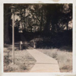 MacArthur Meadow