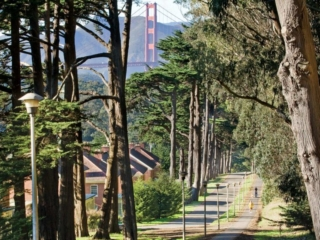 Presidio of San Francisco Walkway
