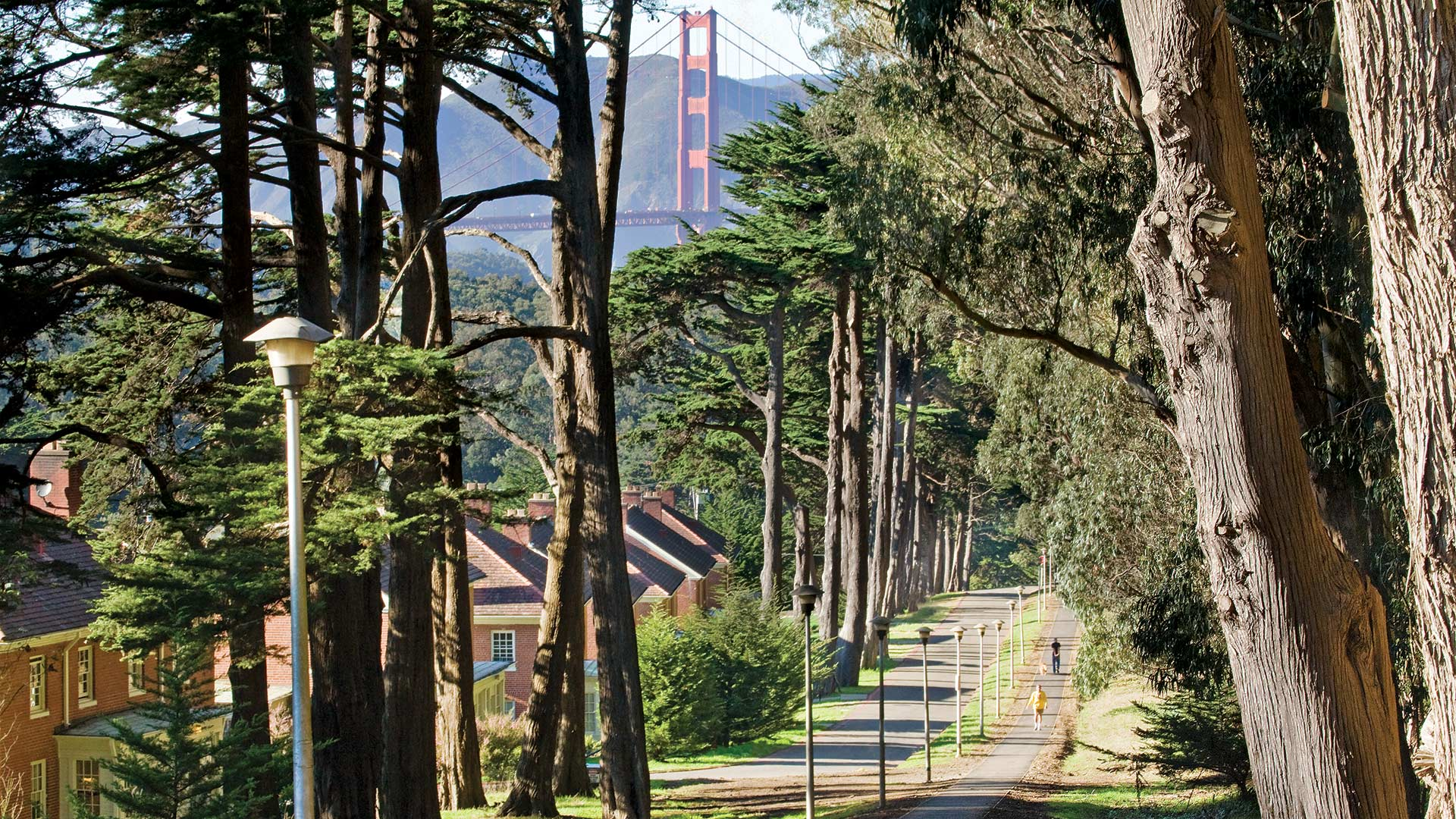 Presidio of San Francisco Walkway
