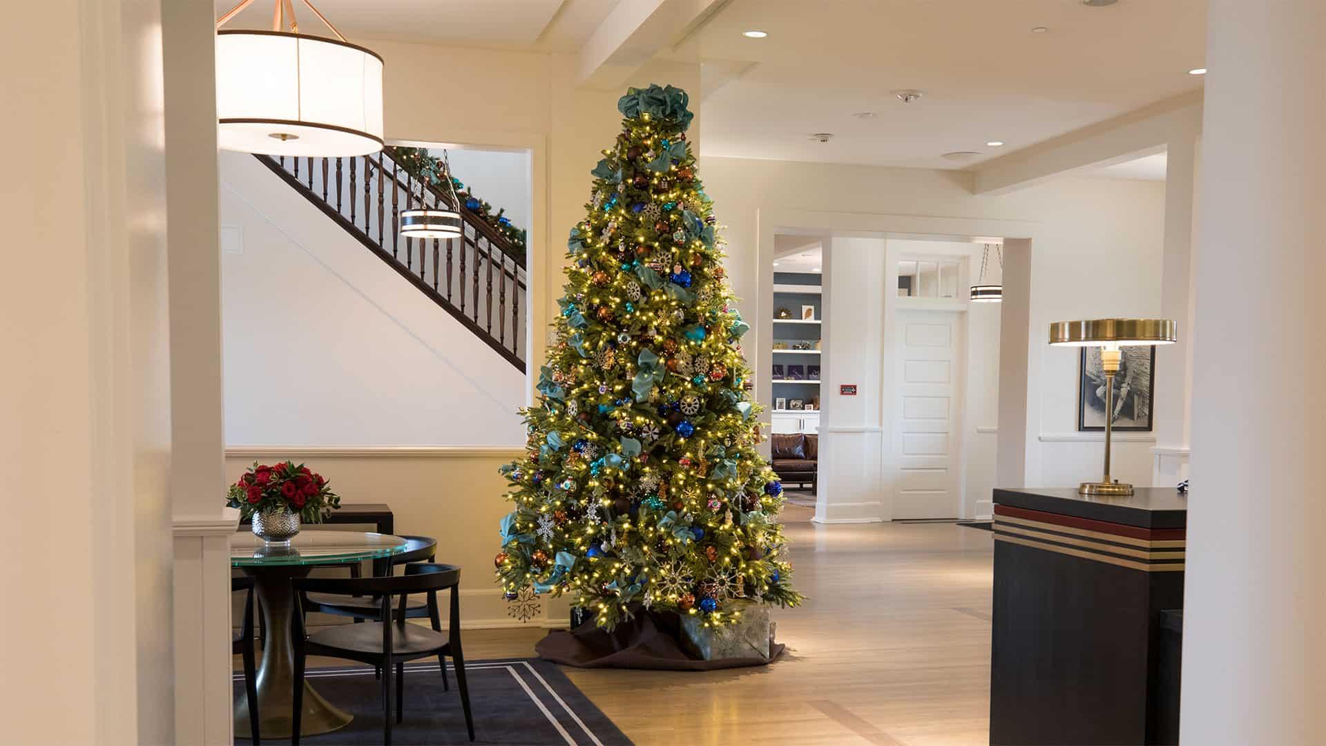 Lodge at the Presidio - Holiday Lights And Christmas Tree